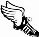 track shoe with wings